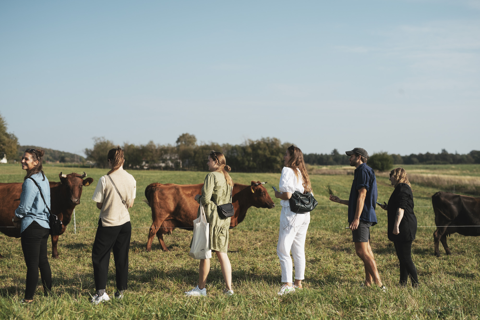 Foto: Liv Kastrup for Madland